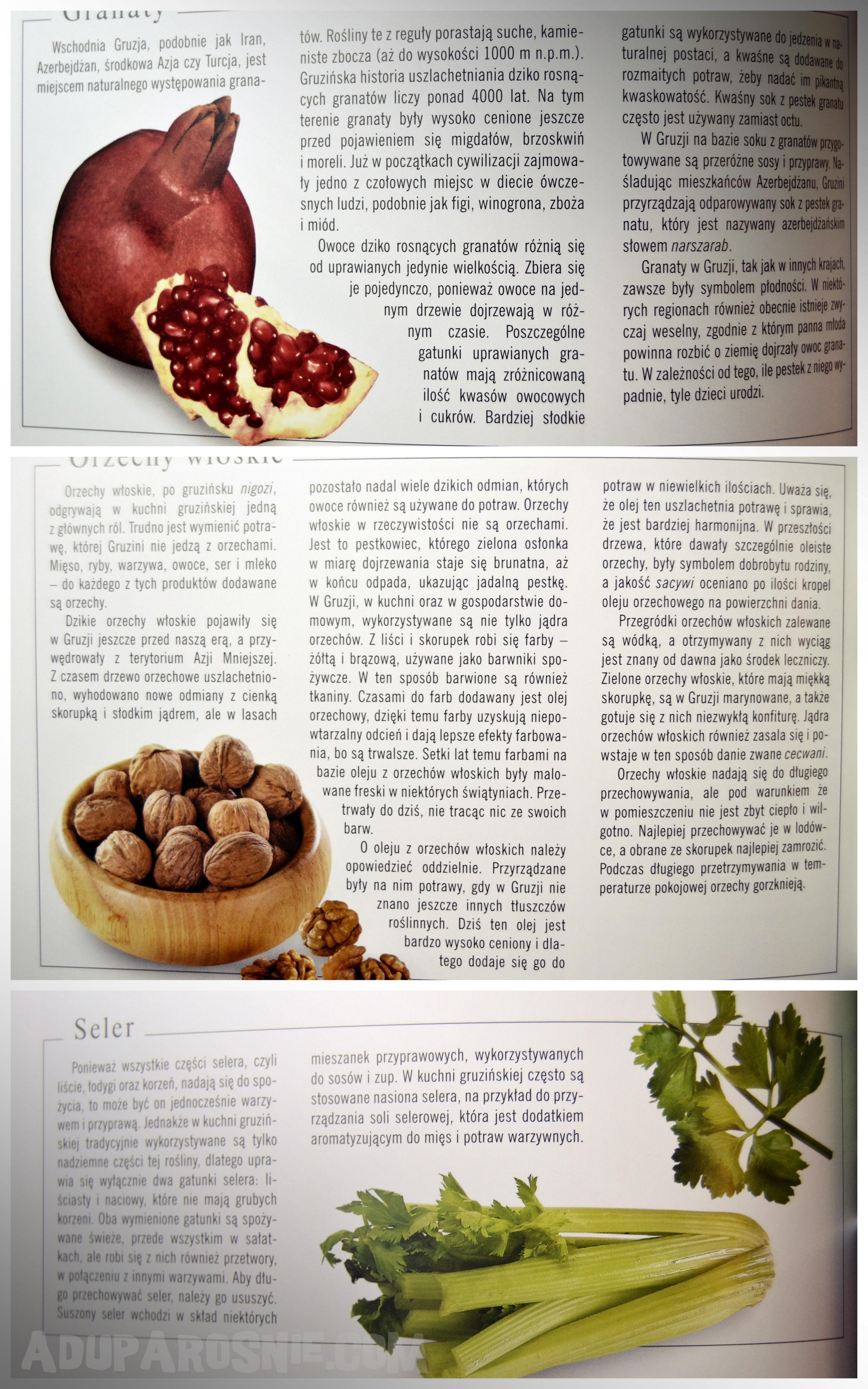 tradycyjna kuchnia gruzińska 8