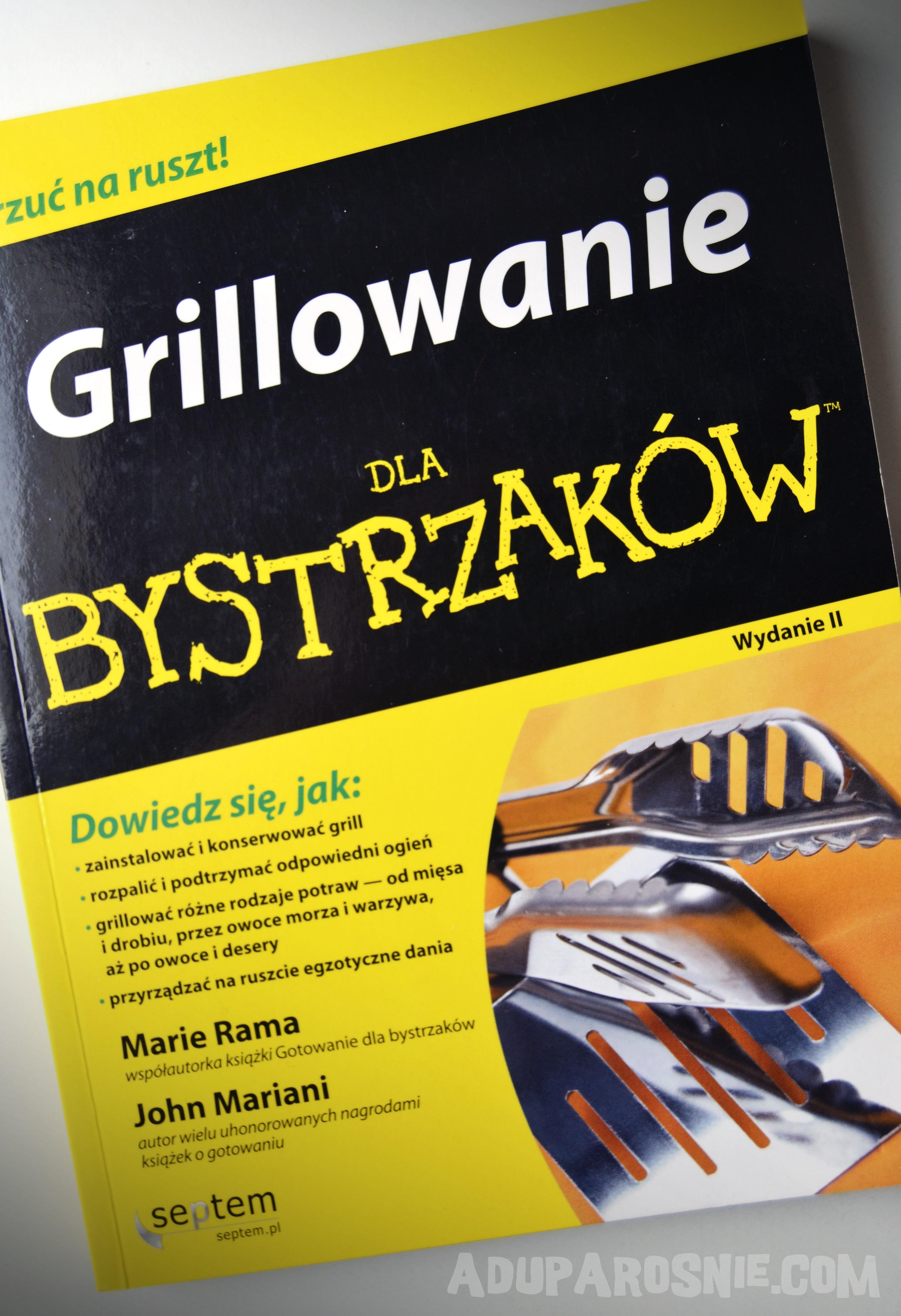 grillowanie dla bystrzaków (2)