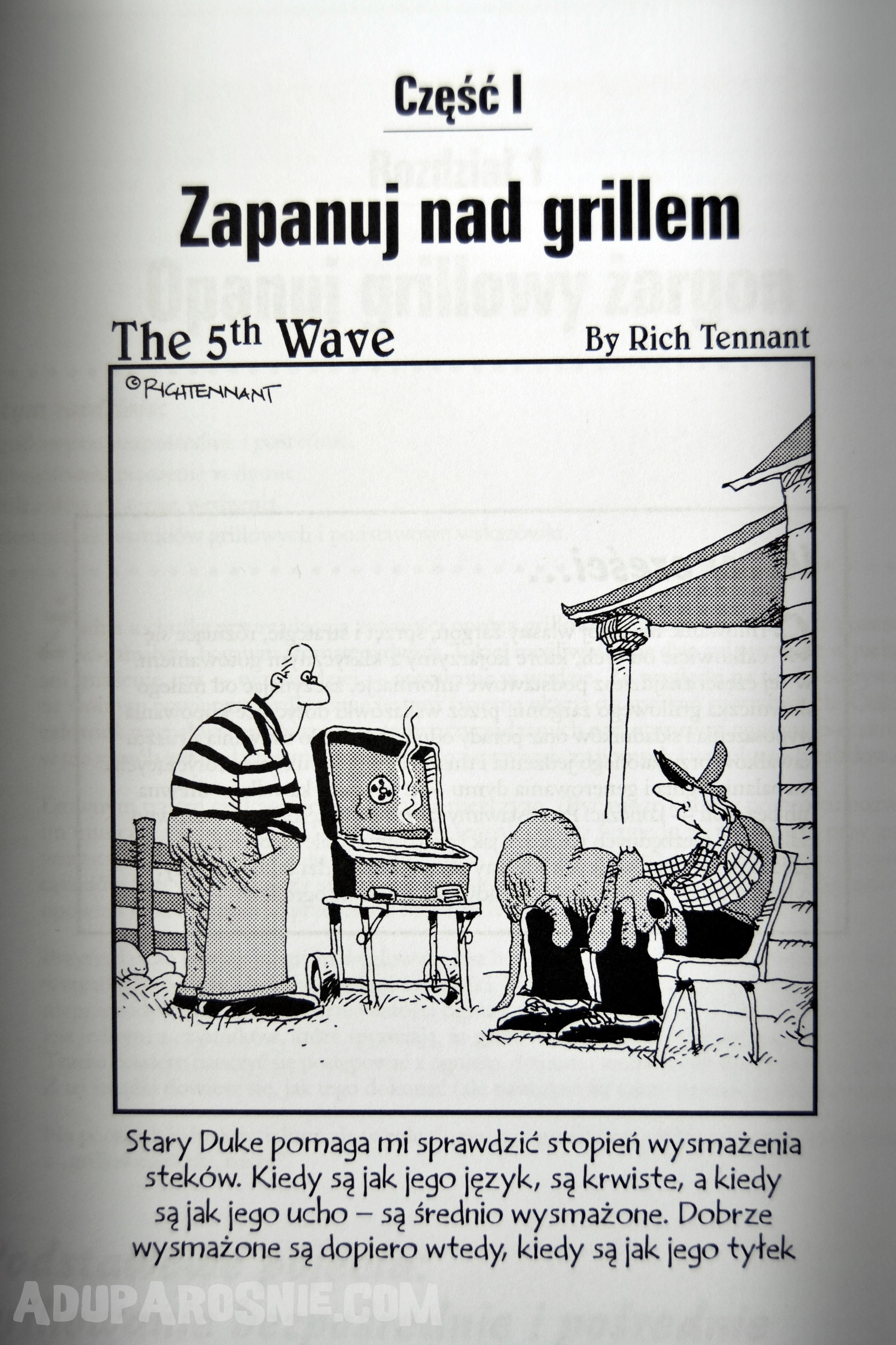 grillowanie dla bystrzaków (5)