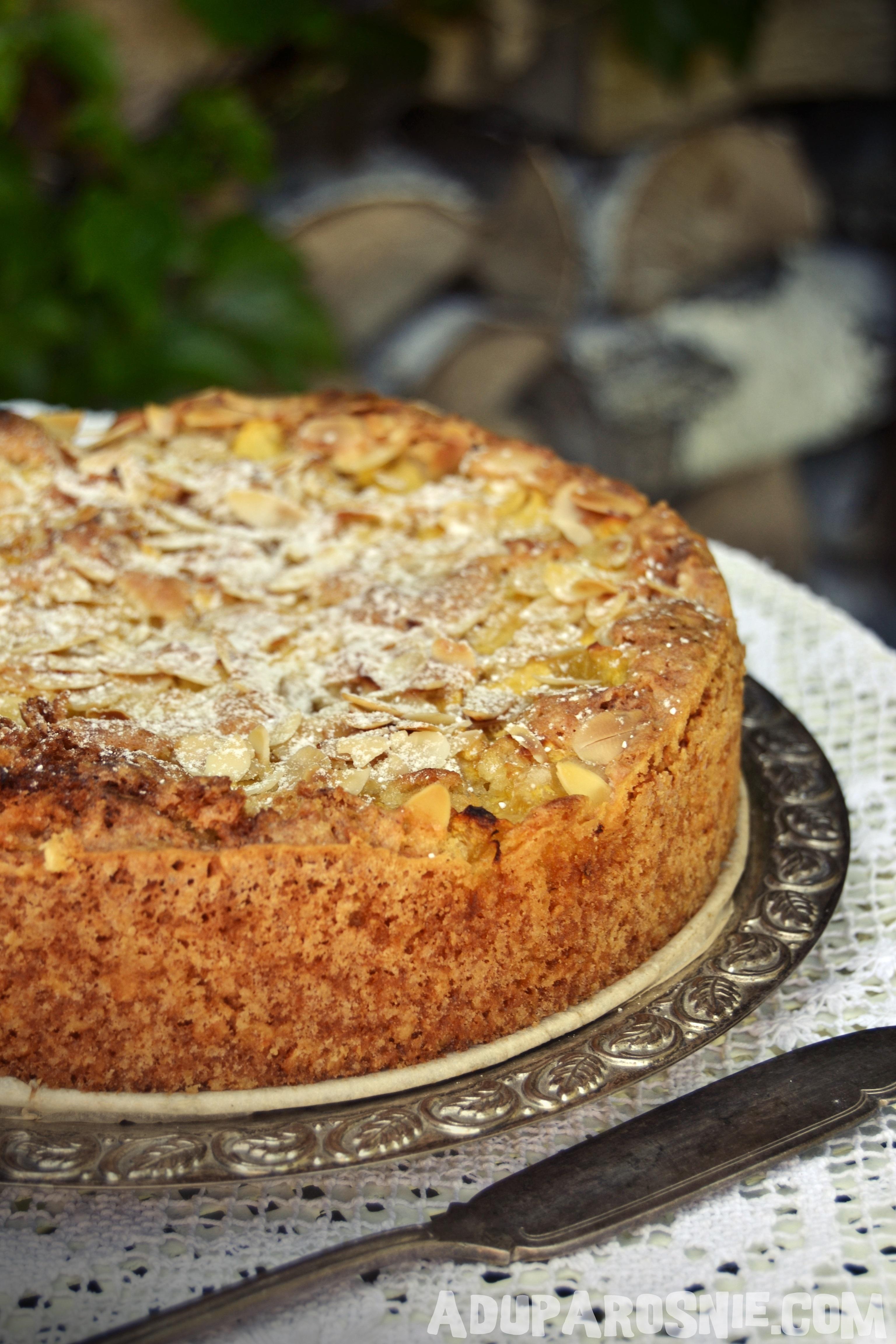 ciasto brzoskwiniowe z płatkami owsianymi (2)