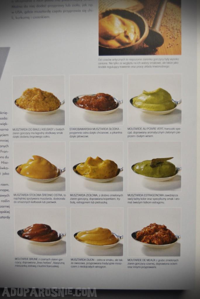 kuchnia. produkty spożywcze z czterech stron świata (2)